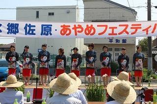 H26あやめフェスティバル (53).jpg